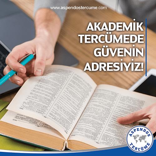 Akademik Tercüme - Aspendos Tercüme