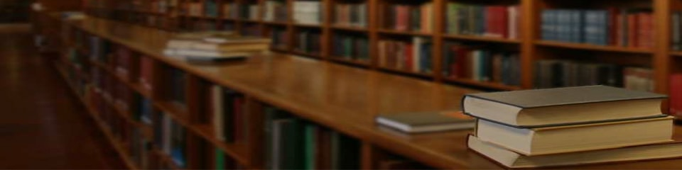 Antalya Academic Translation - Aspendos Tercüme