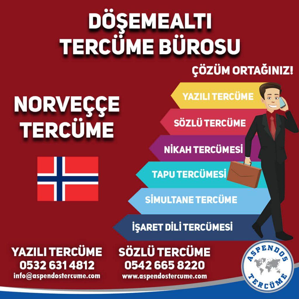 Döşemealtı Tercüme Bürosu - Norveççe Tercüme - Aspendos Tercüme