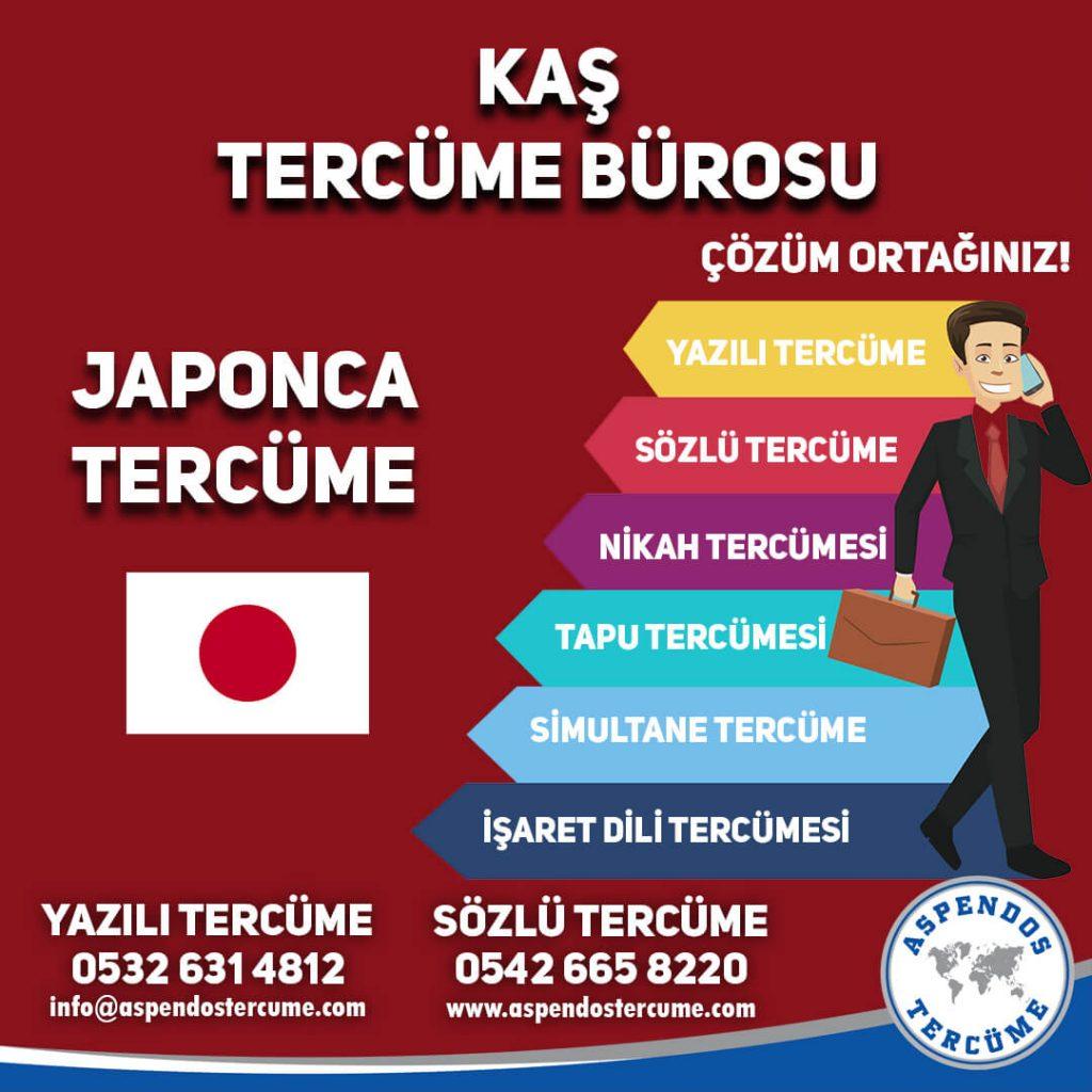 Kaş Tercüme Bürosu - Japonca Tercüme - Aspendos Tercüme