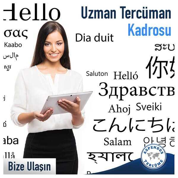 Uzman Tercüman Kadrosu
