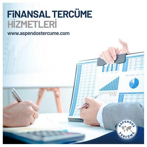 Şartname Tercümesi - Finansal Tercüme