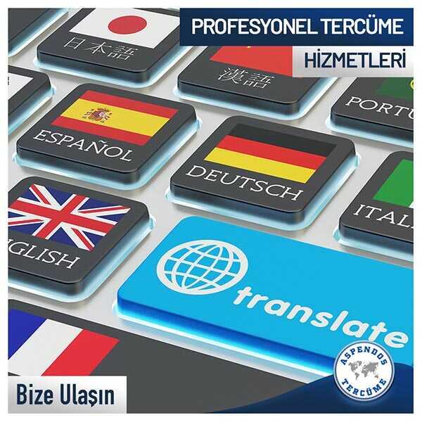 Profesyonel Tercüme Hizmetleri