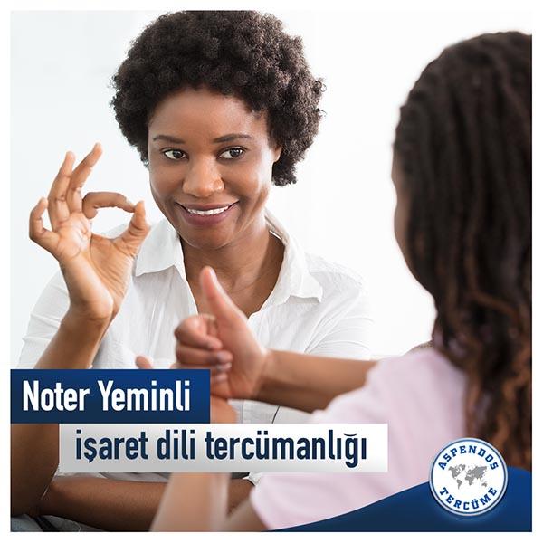 Türk işaret dili çevirisi