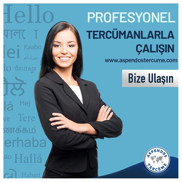 Profesyonel Tercümanlarla Çalışın!