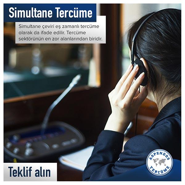 Antalya Almanca Simultane Tercümanı
