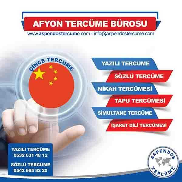 Afyon Çince Tercüme Hizmeti