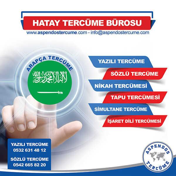Hatay Arapça Tercüme Hizmeti