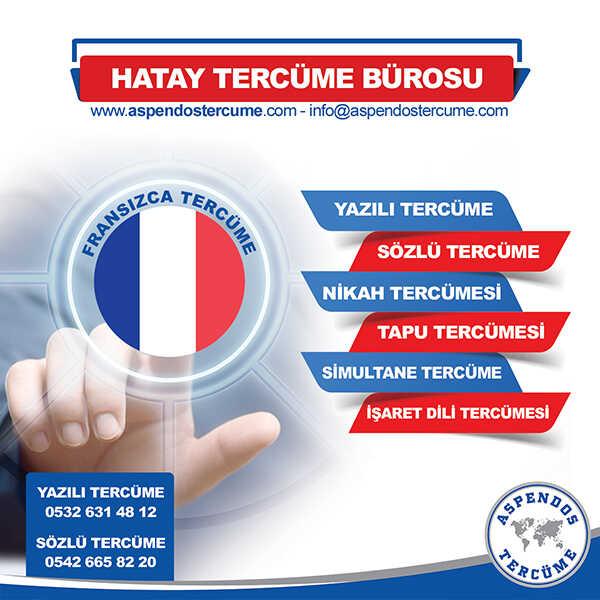 Hatay Fransızca Tercüme Hizmeti