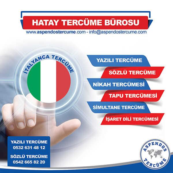 Hatay İtalyanca Tercüme Hizmeti