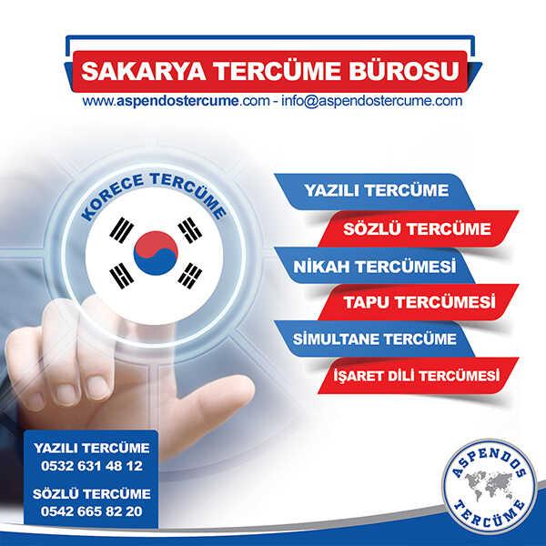 Sakarya Korece Tercüme Hizmeti