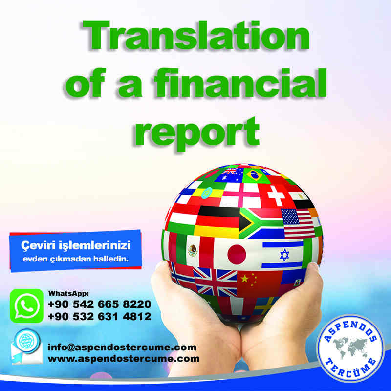 translation_of_a_financial_report_