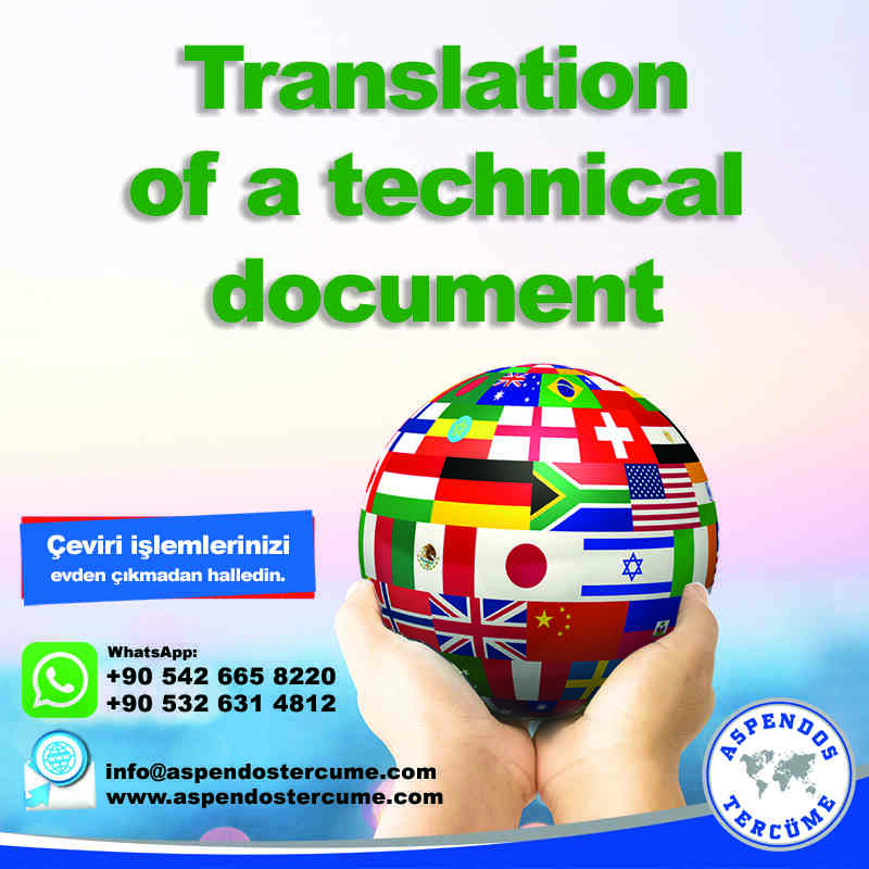 translation_of_a_technical_document_