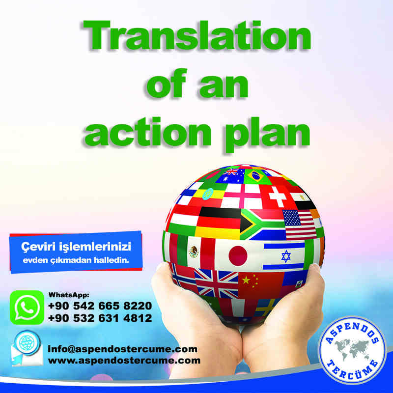 translation_of_an_action_plan_