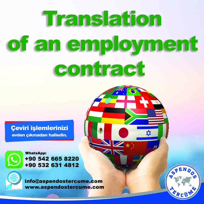 translation_of_an_employment_contract_