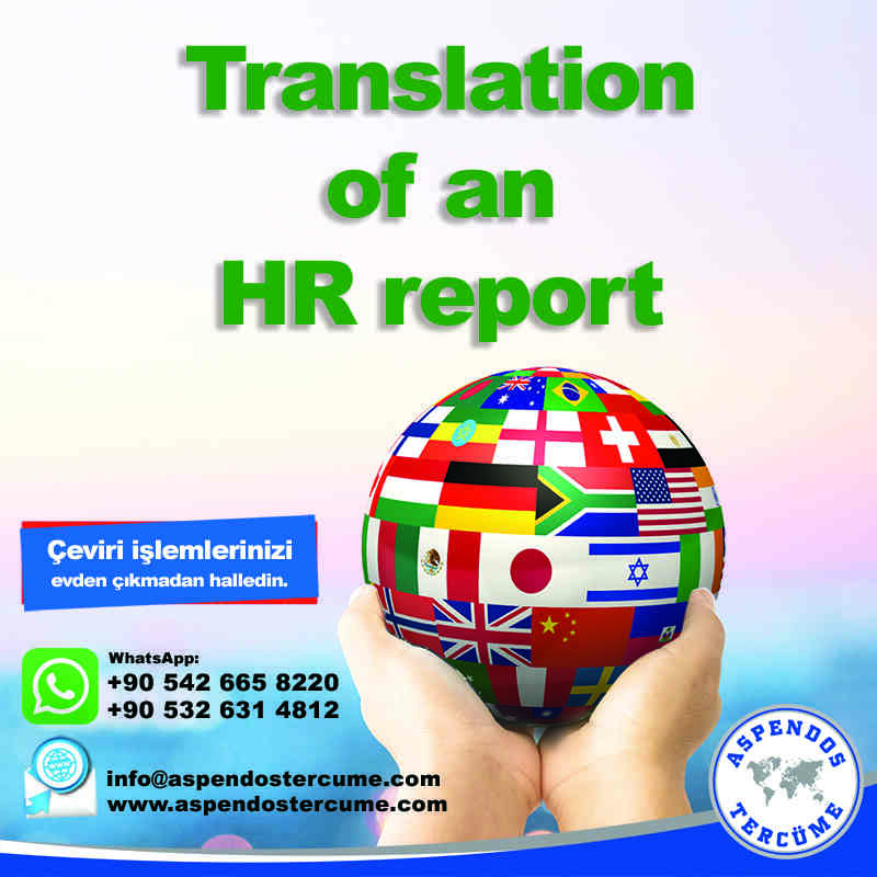 translation_of_an_hr_report_